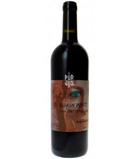 """Grain Pinot """"Les Dahrres"""" - 2015 - Marie Thérèse Chappaz"""