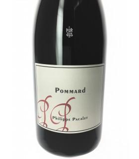 Pommard - 2010 - Philippe Pacalet - Magnum