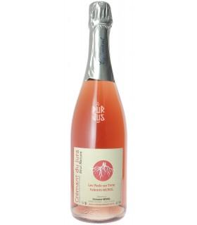 Crémant du Jura Brut Rosé - Domaine Morel - Valentin Morel