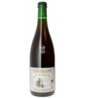 Cantillon Rosé de Gambrinus - Bière - 5° - 75 cl