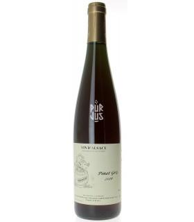Pinot Gris Macération - 2016 - Jean François Ginglinger