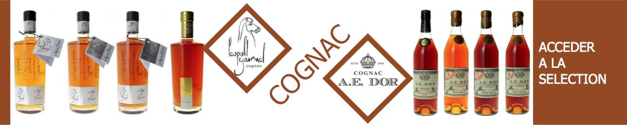 cognac A.E DOR & Gourmel