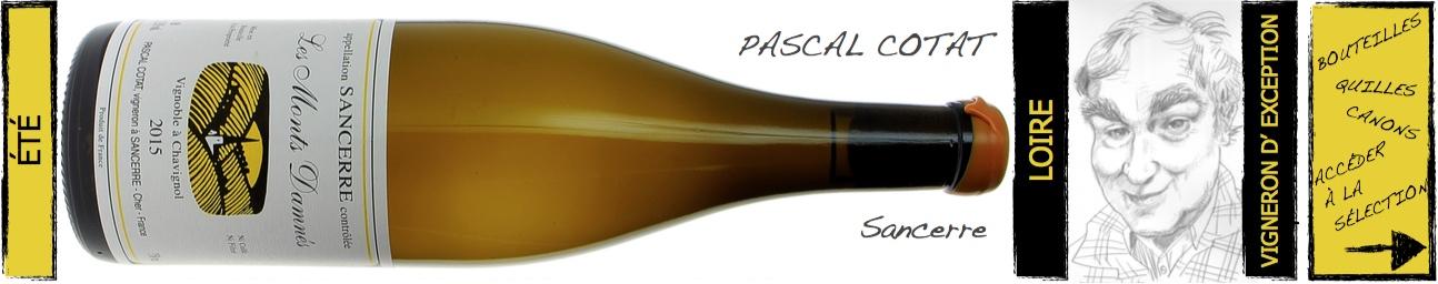 sancerre Pascal Cotat