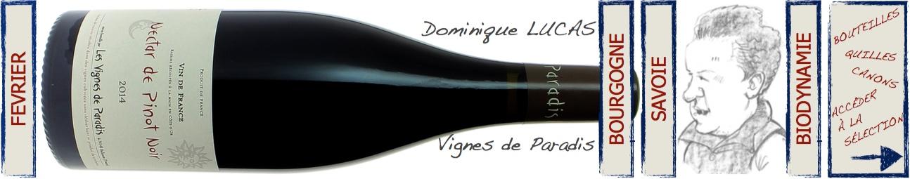 dominique Lucas - Les Vignes de Paradis