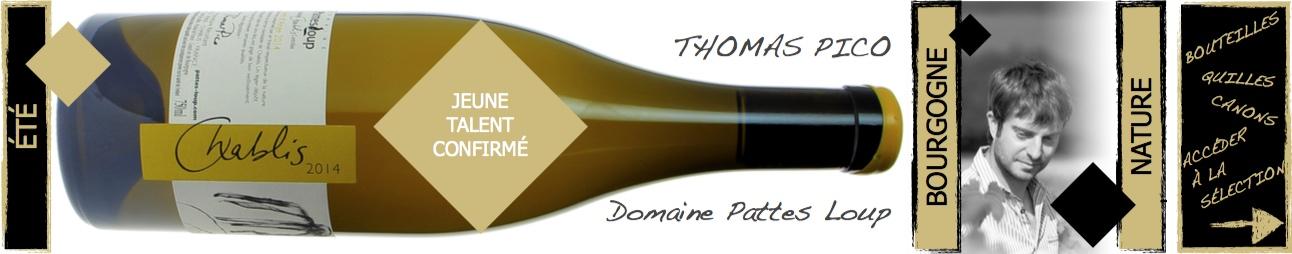 thomas Pico - Domaine Pattes Loup