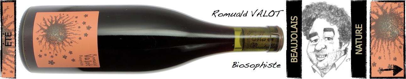 Romuald Valot - Biosophiste
